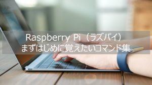 Raspberry Pi(ラズパイ)初心者がはじめに覚えたいコマンドまとめ