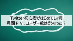 Twitter(ツイッター)初心者がはじめて1ヶ月。月間PV、ユーザー数はどうなった?