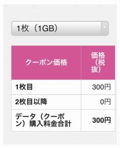 eSIMデータ購入3