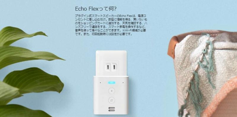 Echo Flexって何?