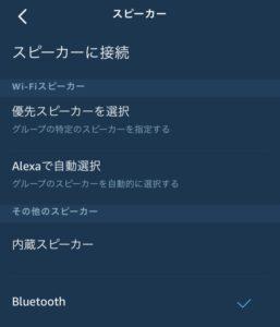 Echo Flex Bluetooth